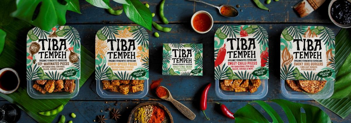 Image result for tiba tempeh